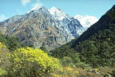 Mera Peak (6461m) depuis Tashing Ongma
