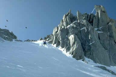 Ski de couloir aux Grands-Montets