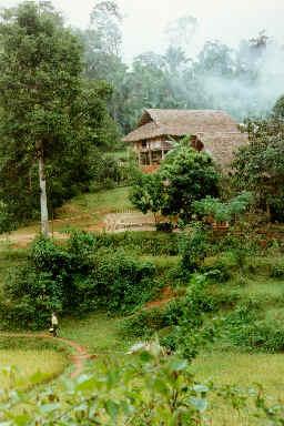 Habitation Thaï