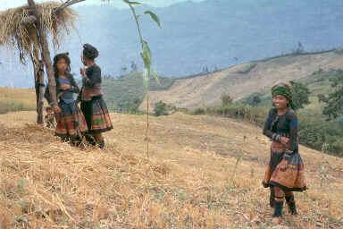 Femmes Muong dans leurs vêtements traditionnels