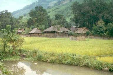 Village Thaï dans la province de Song La